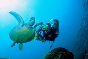 Gangga Divers