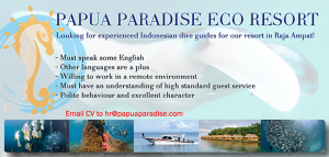 Raja Ampat: Indonesian Dive Guides wanted for Papua Paradise Eco Resort
